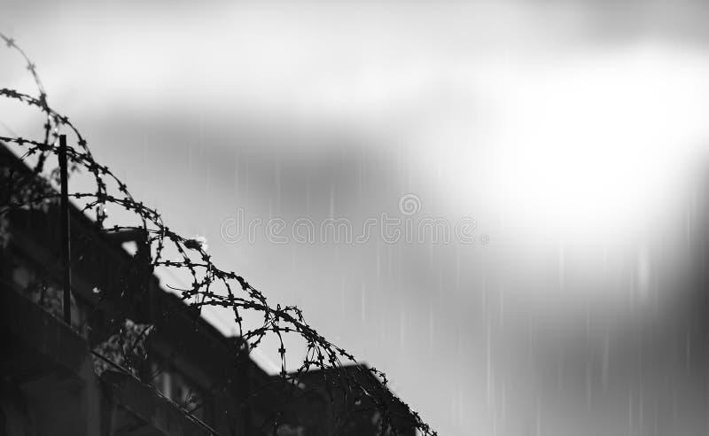 Alambre de púas diagonal de la prisión durante la lluvia fotografía de archivo libre de regalías