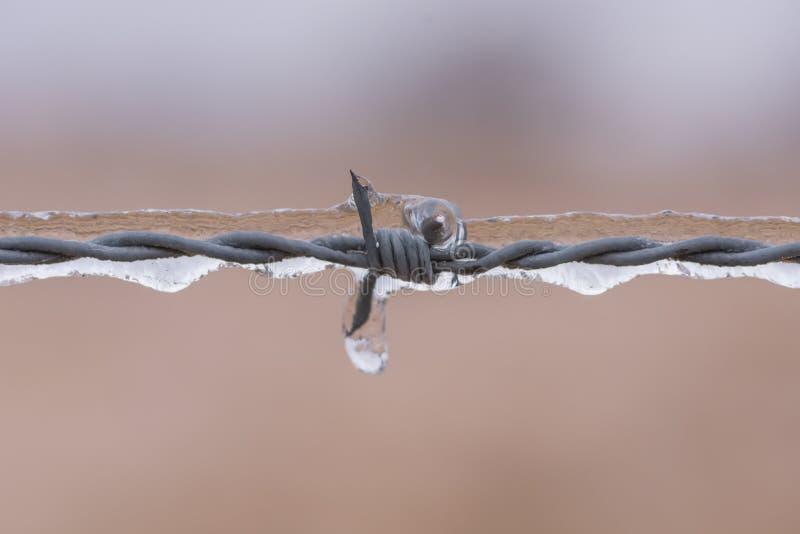 Alambre de púas embalado en hielo fotos de archivo
