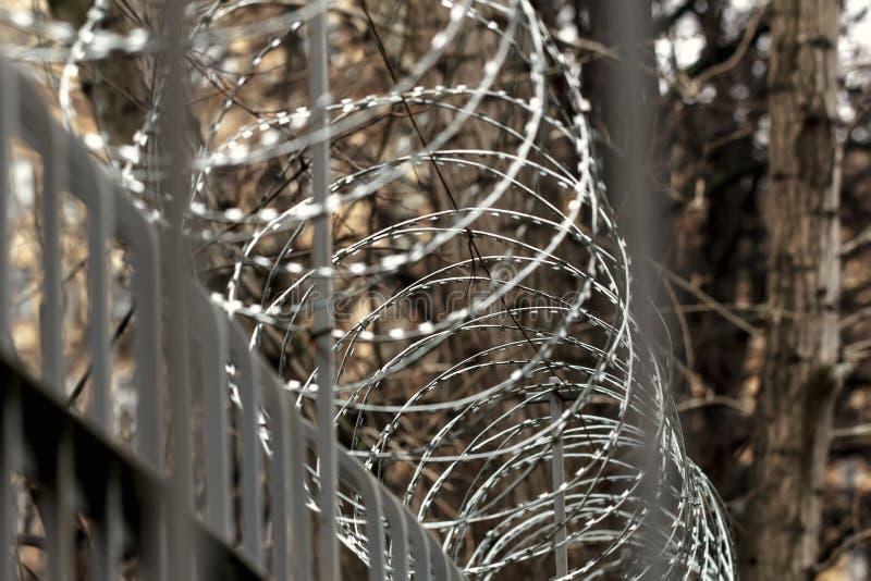 Alambre de púas en la cerca en el día del otoño foto de archivo