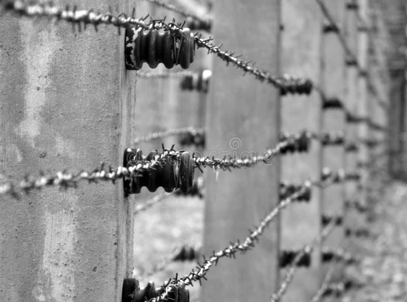 Alambre de púas en la prisión fotografía de archivo libre de regalías