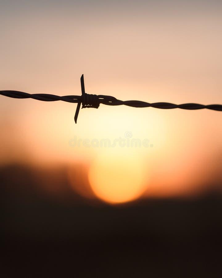 Alambre de púas en la puesta del sol imagenes de archivo
