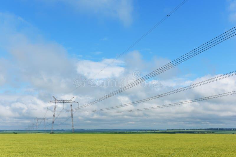Alambres y polos muy largos de la transmisión de poder grande foto de archivo
