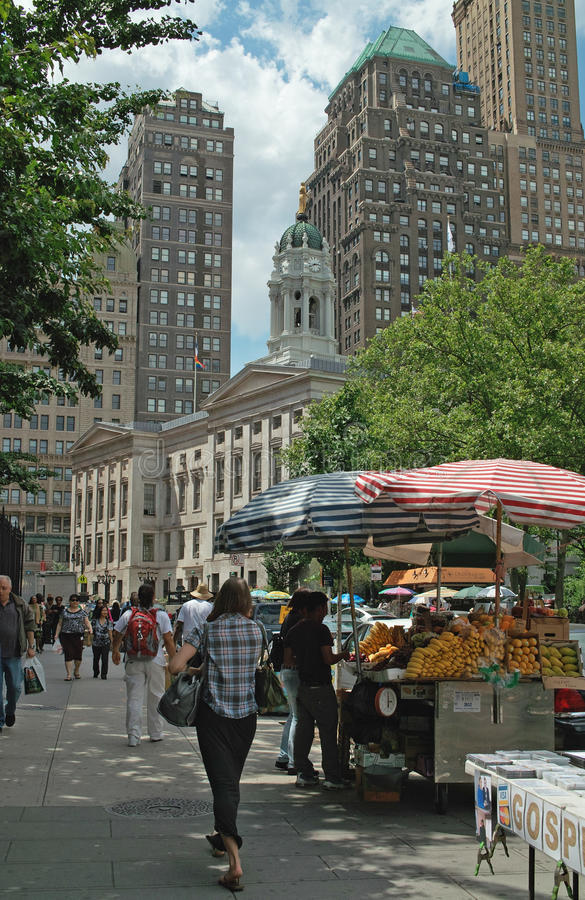 Alameda Brooklyn New York City de Fulton fotos de stock