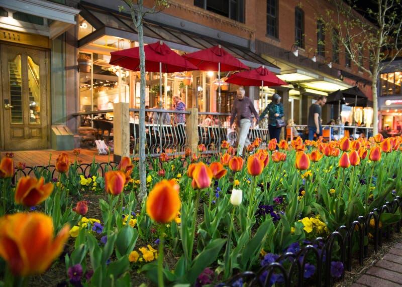 Alameda da rua da pérola de Boulder Colorado imagem de stock royalty free
