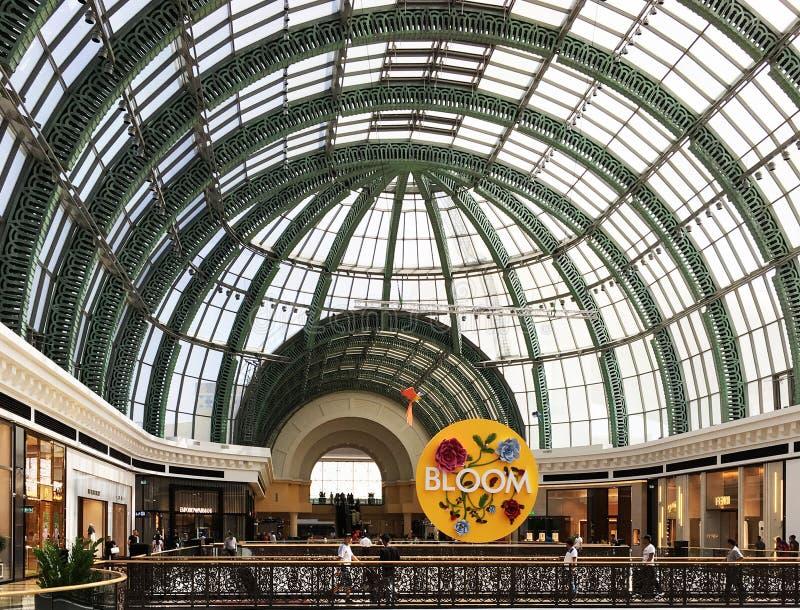 Alameda dos emirados, Dubai UAE fotografia de stock royalty free