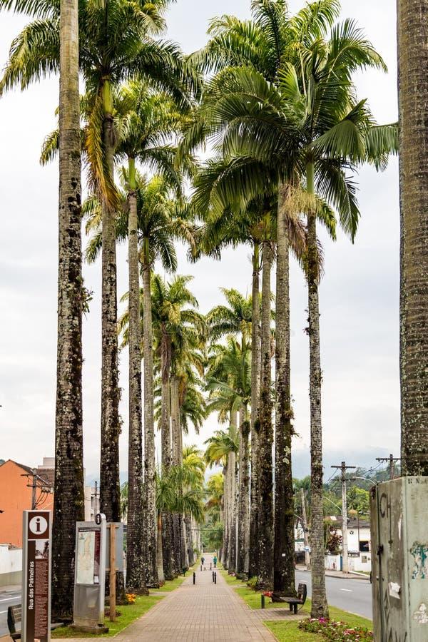 Alameda Duque de Caxias Rua Blumenau, Santa Catarina imagens de stock