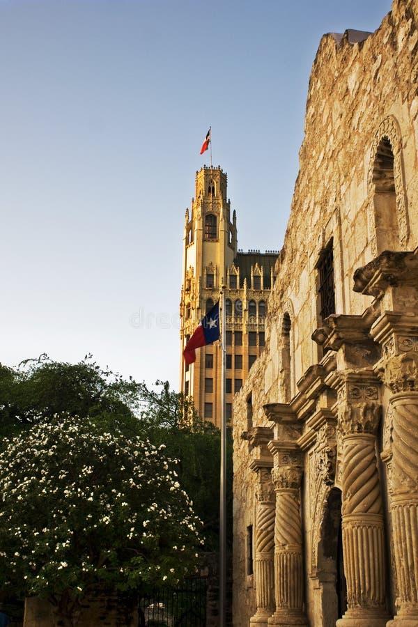 Alamo stock afbeeldingen
