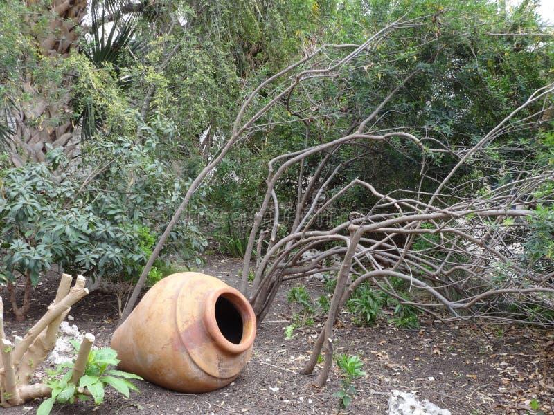 Alamo uprawia ogródek garncarstwo obraz stock