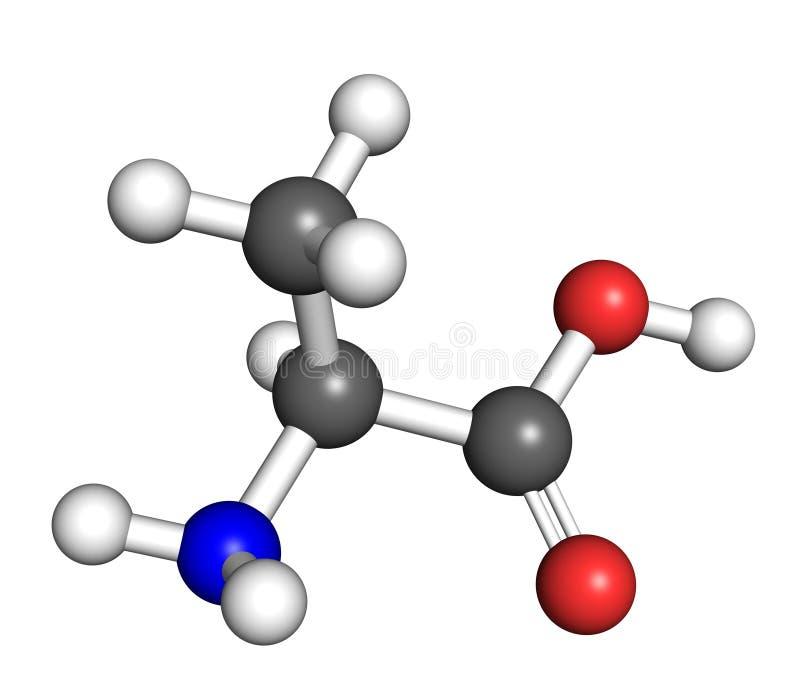 Alaninemolekyl stock illustrationer