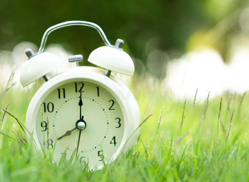 Alarm clock on fresh green gress background, morning relax time concept. Alarm clock on fresh green gress background, morning relax time royalty free stock images