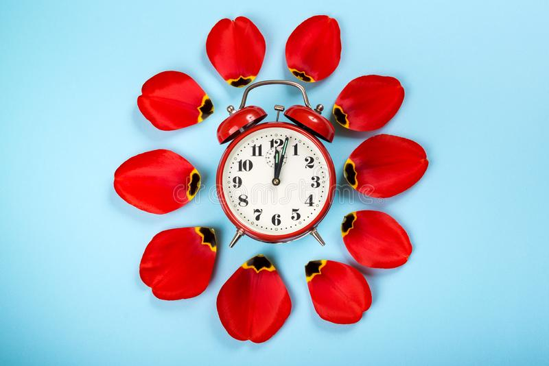 Alarm clock with tulip petals around. Flat lay style, over blue background. Daylight savings time concept. Spring Forward. Stylish royalty free stock photography