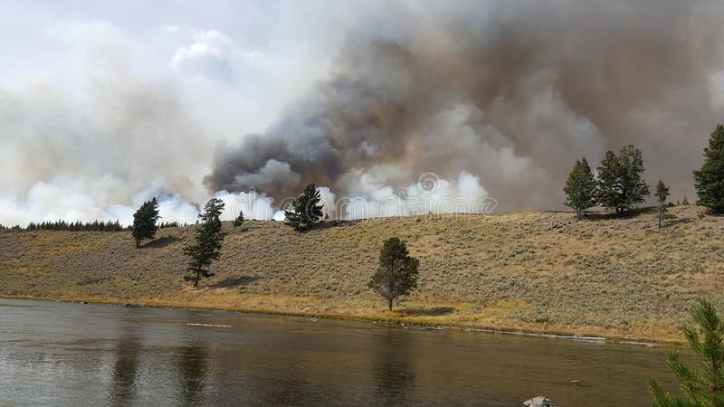 An Alarming Site in Yellowstone. Fire and Smoke comes to Yellowstone National Park. The Yellowstone River flows normally in the foreground as the fire takes over stock image