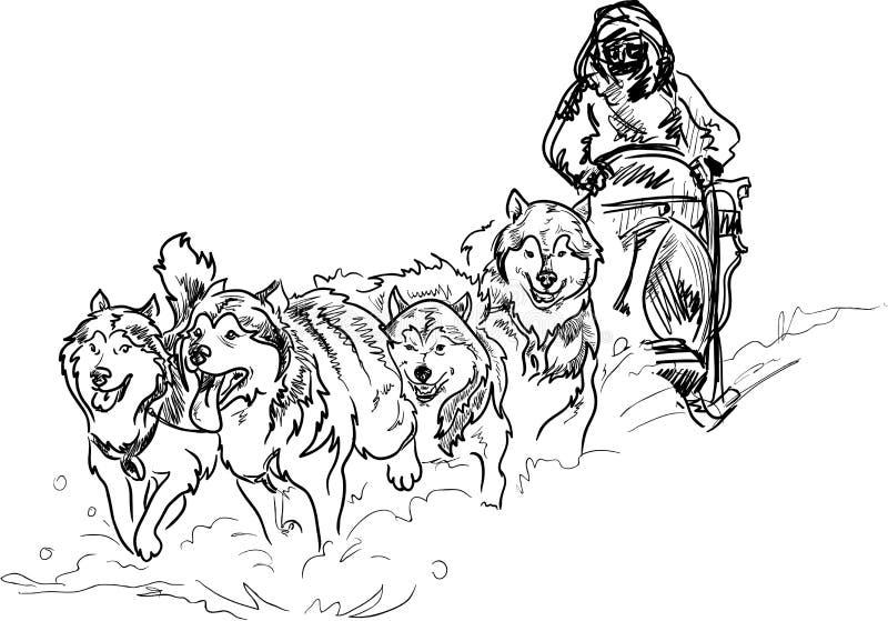 Alascy sanie psy ilustracja wektor