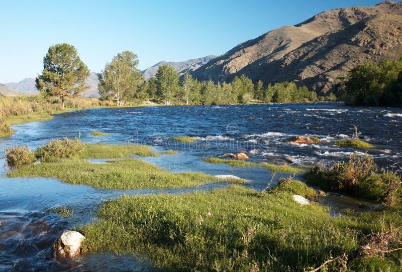 alash ποταμός στοκ εικόνα με δικαίωμα ελεύθερης χρήσης