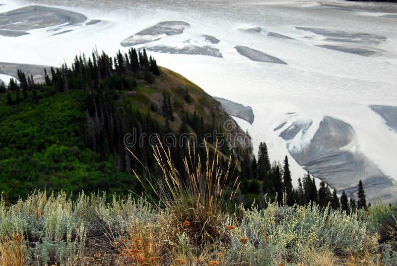 Alaska överblick av shoreline- och gyttjalägenheterna av kopparRien arkivfoto