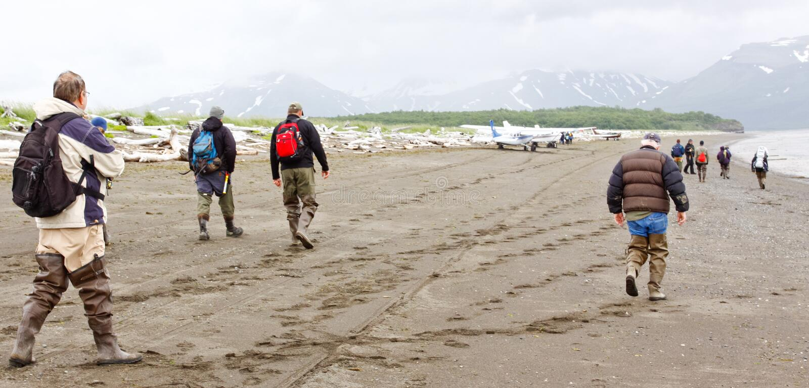 Alaska Bear Viewing Group Planes Hallo Bay. A group of nature lovers and photographers, located Hallo Bay in Katmai National Park in Alaska, head back along the stock photography