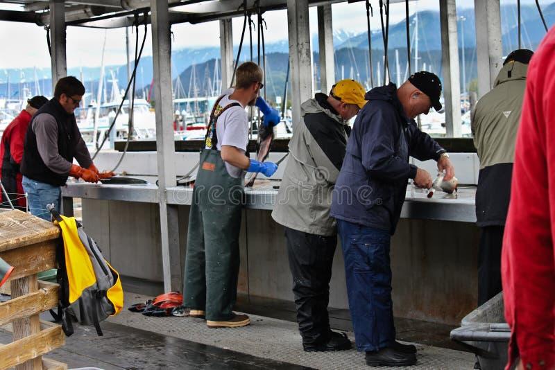 alaska cleaningdocks fiskar sewardstationen royaltyfria foton