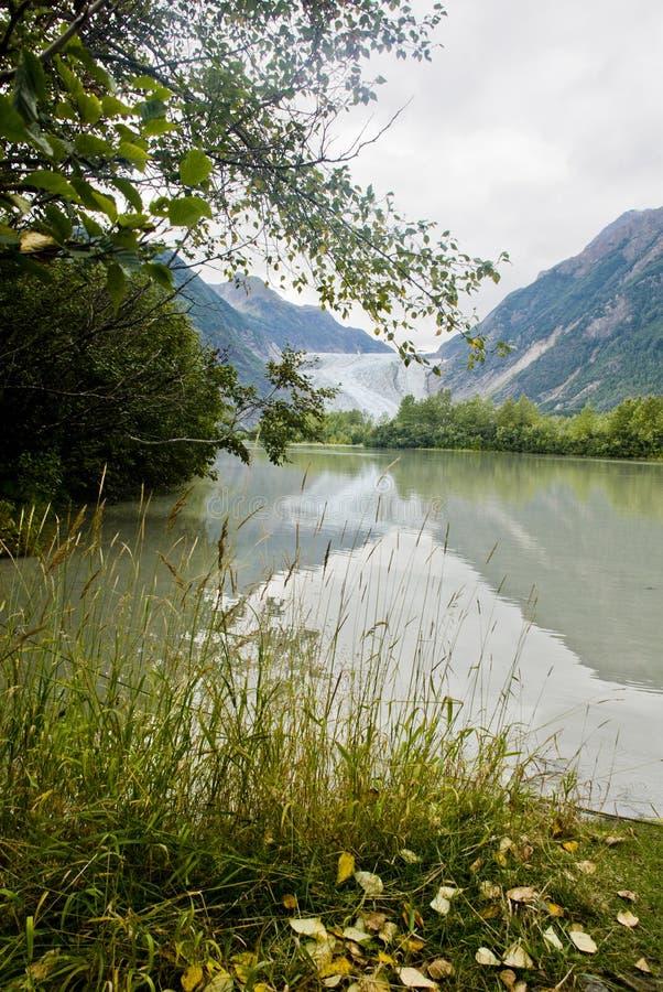 Alaska - Davidson Glacier - Beautiful Landscape. USA - Alaska - The Glacier Point Wilderness Safari - Davidson Glacier - Travel destination - Alaska Cruise royalty free stock images