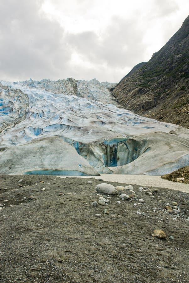 Alaska - Davidson Glacier. USA Alaska, The Glacier Point Wilderness Safari, Davidson Glacier, Travel destination, Alaska Cruise royalty free stock photo