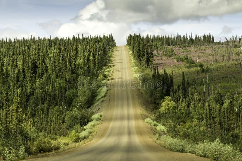 Alaska, estrada de Fairbanks ao círculo ártico foto de stock