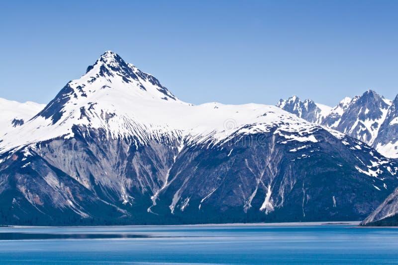alaska fjärdglaciär royaltyfria bilder