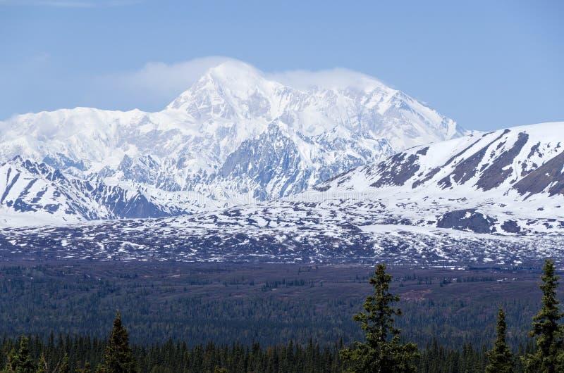 alaska góra Mckinley obraz royalty free