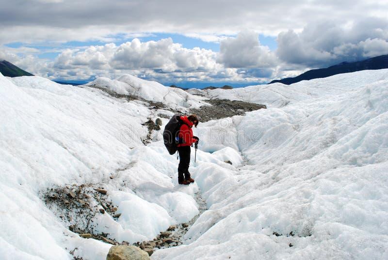 alaska glaciär royaltyfri fotografi