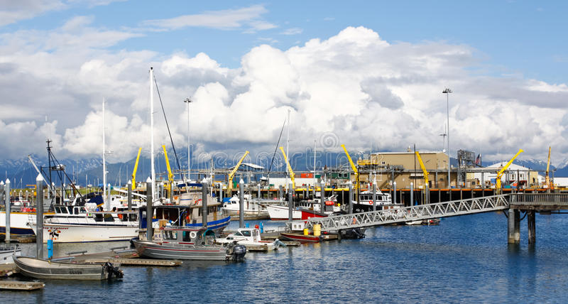 Alaska - Homer Boat Harbor Fishing Fleet. Many visitors to Homer, Alaska come to fish, either commercially or recreationally. The Homer Boat Harbor and fish royalty free stock photography