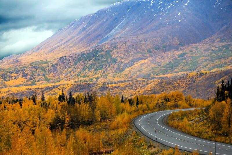 Alaska huvudväg från Haines Junction, Yukon territorier till Haines, Alaska arkivbilder
