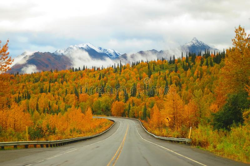 Alaska Mountain Range and Autumn Color on the Parks Highway royalty free stock photo