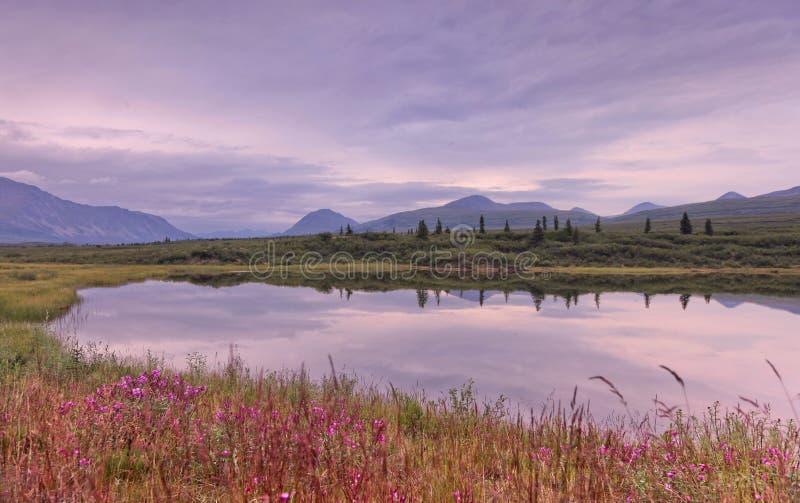 Alaska: Mountan See-Reflexion lizenzfreie stockbilder