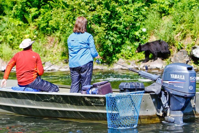 Alaska - People Fishing with Bears royalty free stock photo