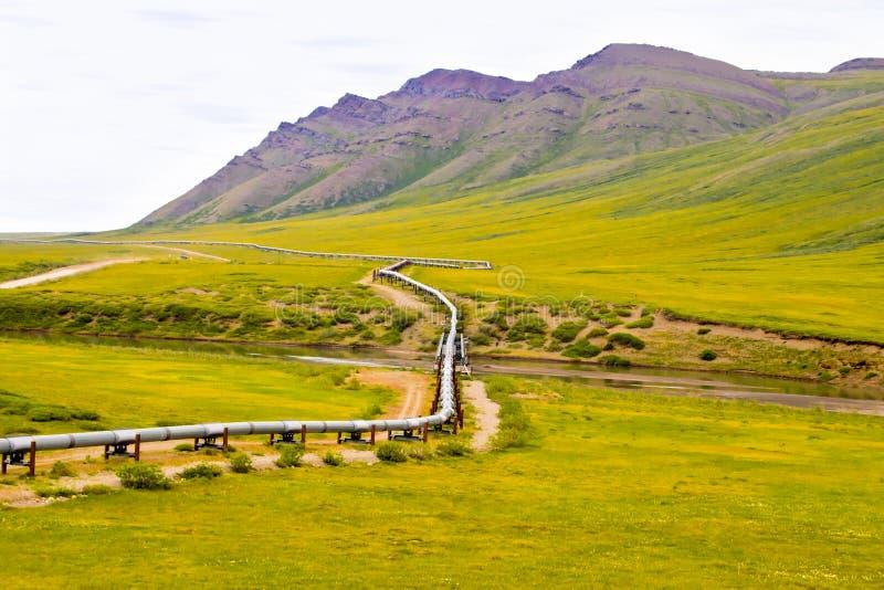 Alaska pipeline royalty free stock photo
