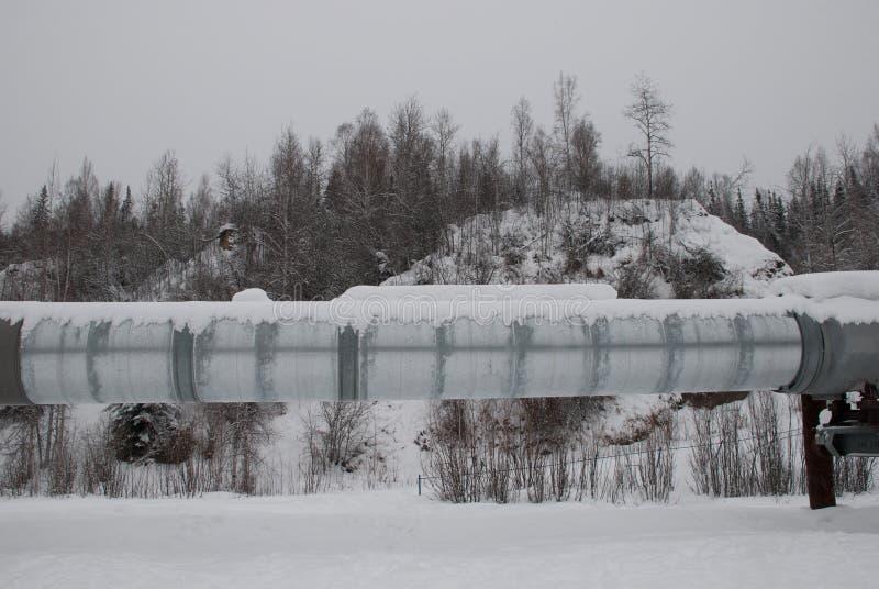 Alaska rurociąg zdjęcie royalty free