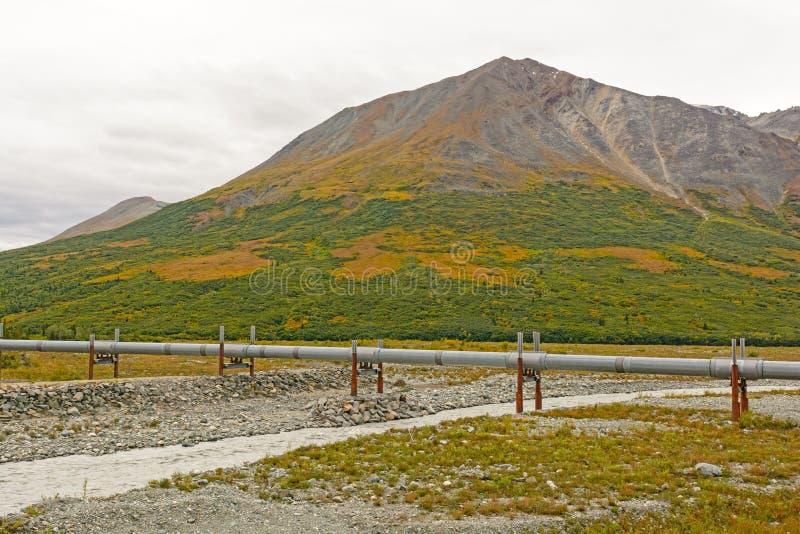 Alaska rurociąg W tundrze zdjęcie royalty free