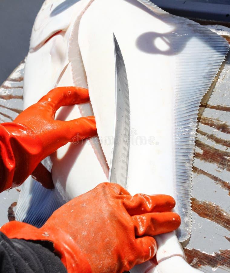 Alaska Rybi Cleaning obrazy royalty free