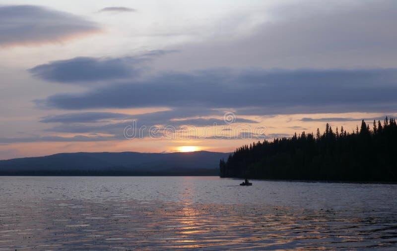 Alaska`s Birch Lake royalty free stock photo