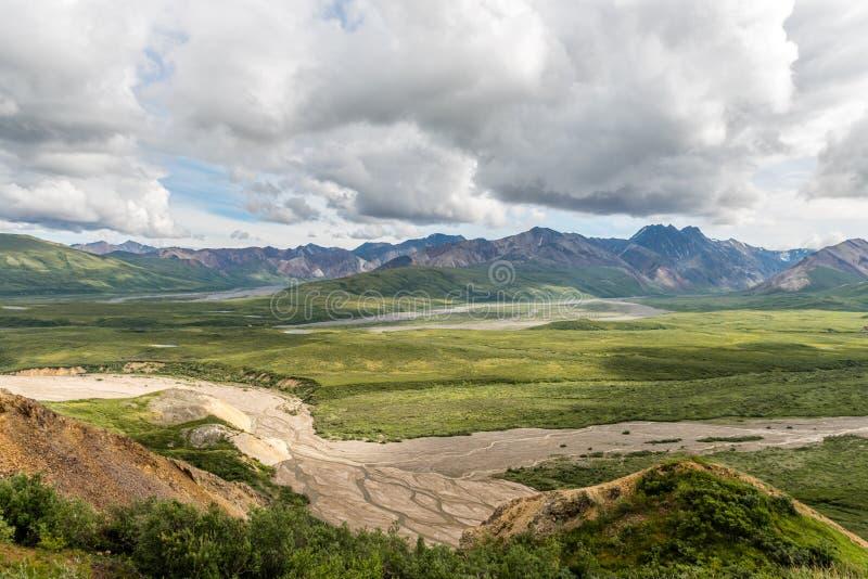 Alaska-` s Denali Nationalpark-Sommer-Tag lizenzfreies stockbild