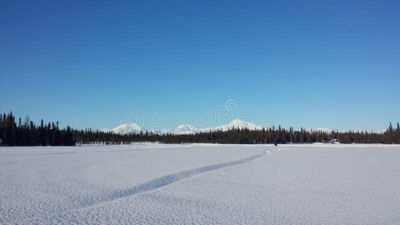 Alaska& x27; s-Landschaft stockbilder