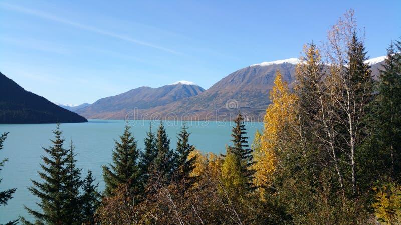 alaska seward zdjęcie royalty free