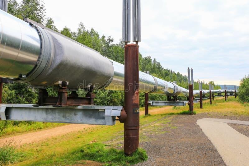 Alaska- - Trans-Alaska-Rohrleitung nahe Fairbanks lizenzfreies stockfoto
