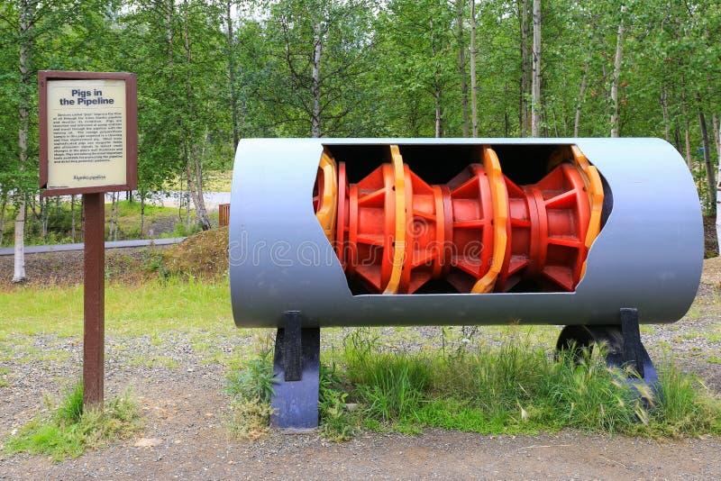 Alaska- - Trans-Alaska-Rohrleitungs-Reinigungs-Schwein-Anzeige lizenzfreie stockbilder