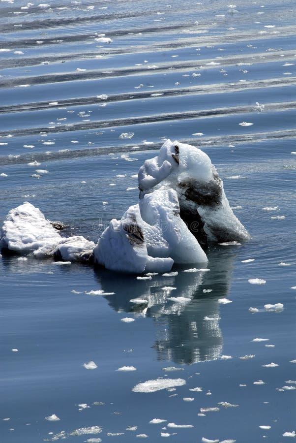 ALASKA/USA _GLACIER BAY_MOUNTIANS royaltyfria foton