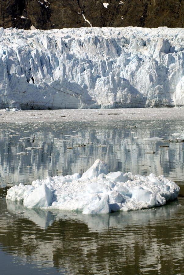 ALASKA/USA _GLACIER BAY_MOUNTIANS arkivfoto