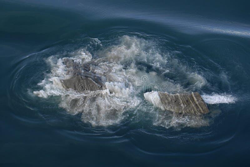 ALASKA/USA _GLACIER BAY_MOUNTIANS I USA arkivbild