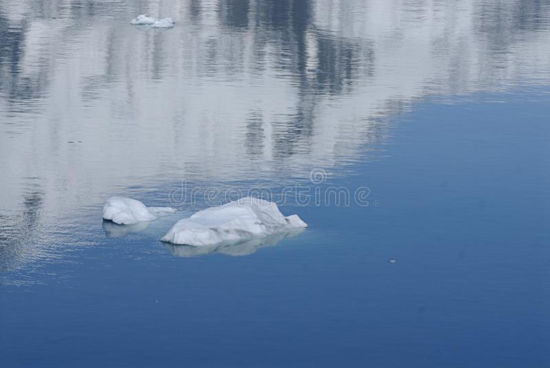 ALASKA/USA _GLACIER BAY_MOUNTIANS I USA royaltyfri foto