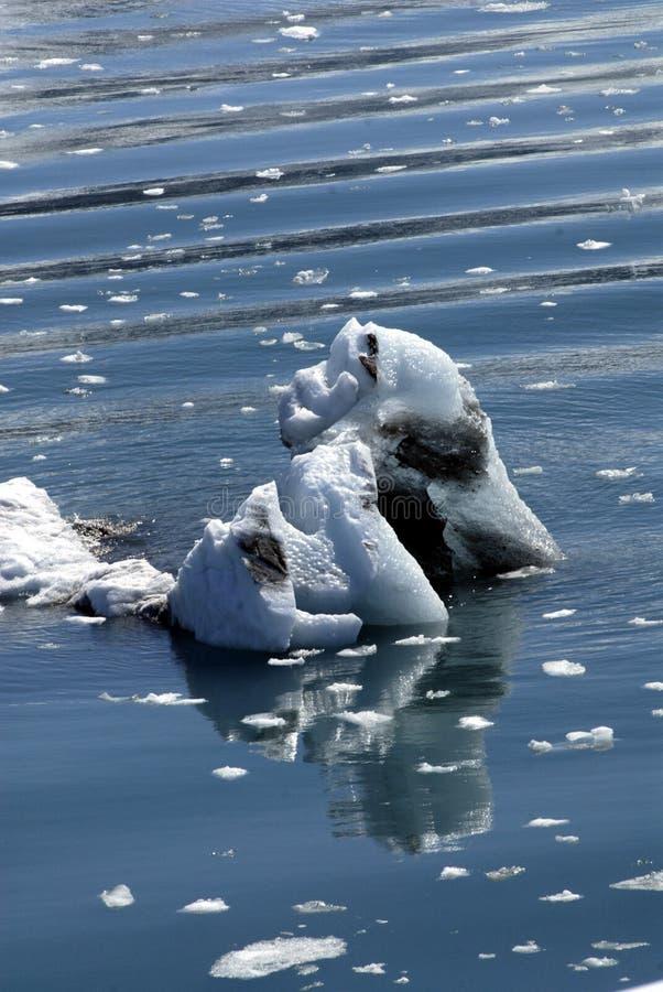 ALASKA/USA _GLACIER BAY_MOUNTIANS I USA royaltyfri fotografi