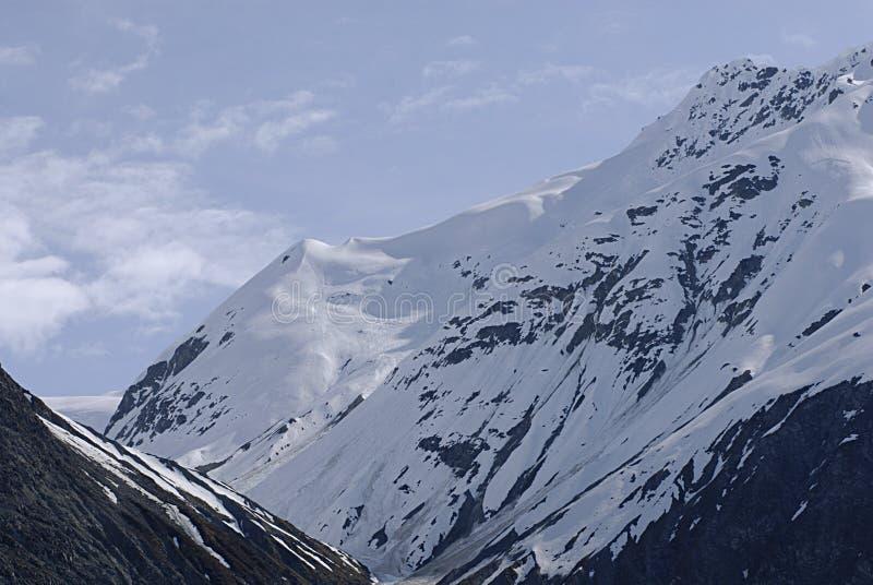 ALASKA/USA _GLACIER BAY_MOUNTIANS I USA royaltyfria bilder