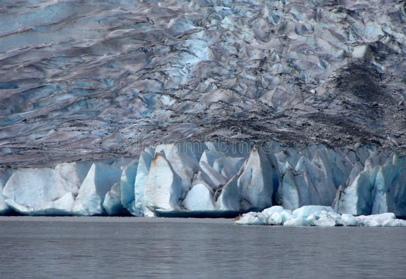alaska välva sig glaciärmendenhall royaltyfri fotografi