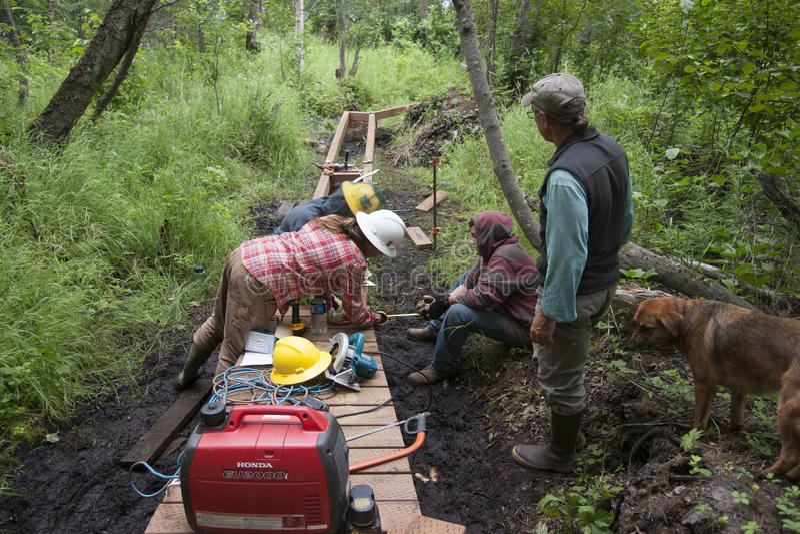 Download Alaska Wilderness Trail Construction Editorial Stock Photo - Image of volunteers, wilderness: 57011028